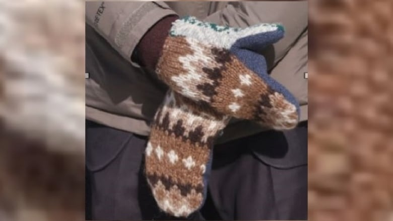 Viral Bernie Sander's Mittens to be Auctioned off for Good Cause